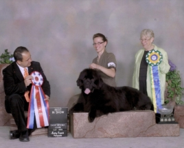 Oscar - BEST IN SHOW