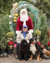 Cinna - with Riki, Glenda and Santa 2016